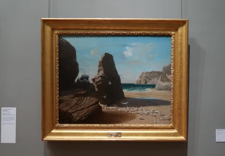 Les Petites mouettes, rivage de Belle-Isle-en-Mer, Port-Donan