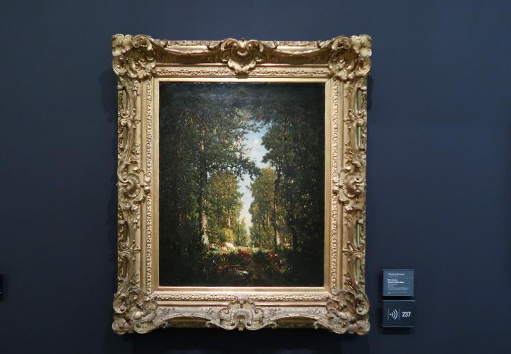 Une avenue, forêt de L'Isle-Adam