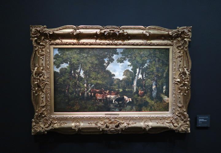 Le Bas-Bréau, forêt de Fontainebleau